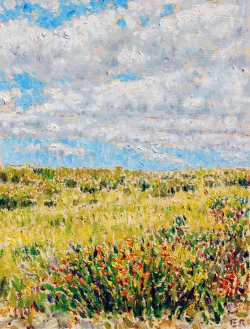 field w wild flowers