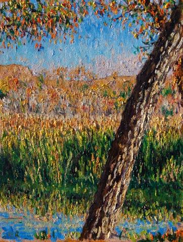 Lindo lake in Fall
