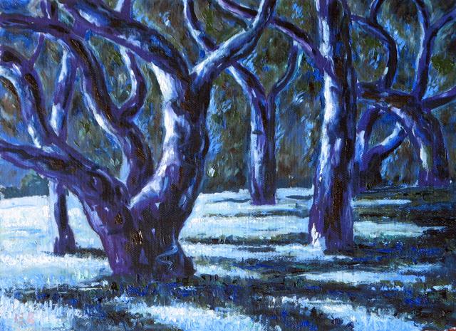 Oak trees in moonlight