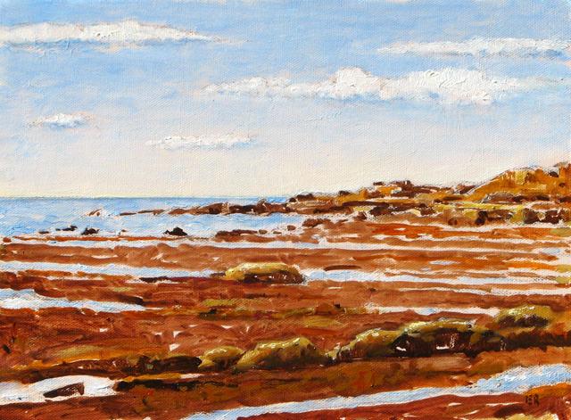 Sunset Cliffs tide pools