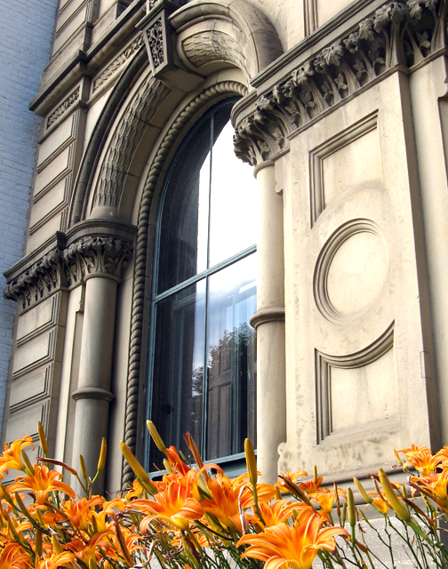lilies w-window