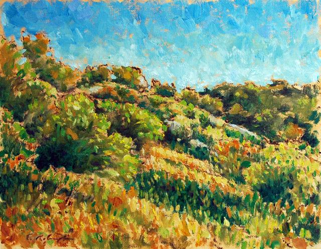 e-Mt Woodson 06-08 2
